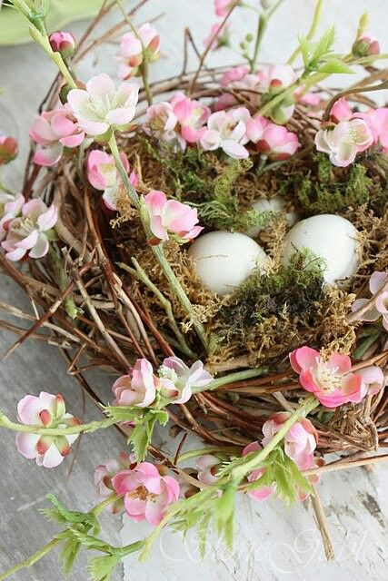 birds nest with eggs would be a beautiful centerpiece for a spring luncheon......