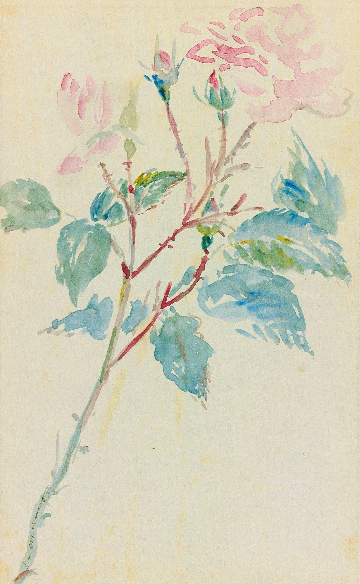 Картинки по запросу bordure de page fleur