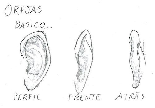 Como dibujar orejas, básico. | Dibujo in 2018 | Pinterest | Drawings ...