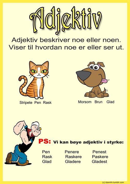 Ida Heen Hansen:
