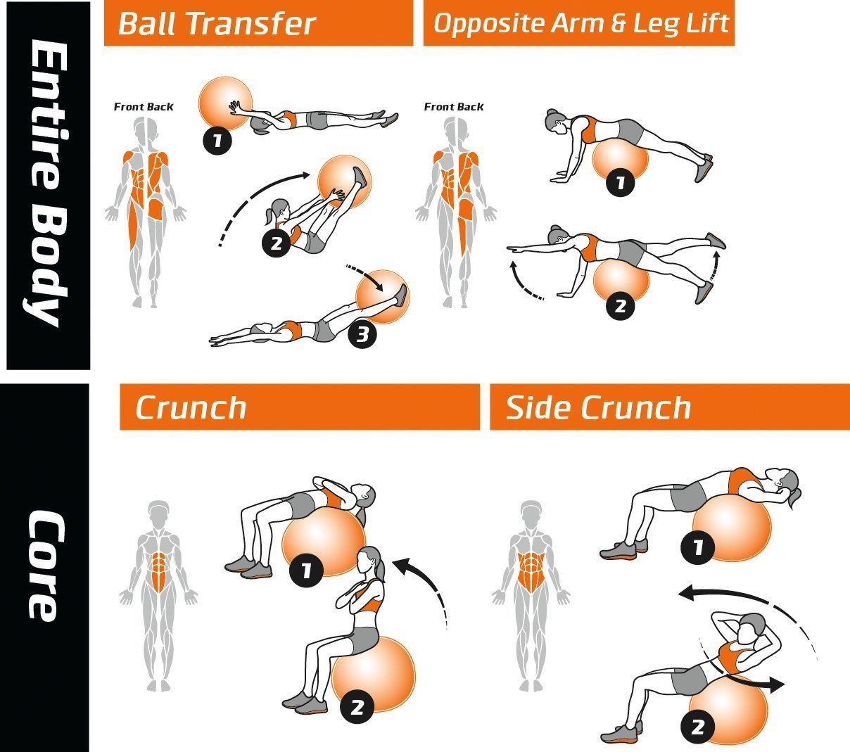 Amazon Com Exercise Ball Poster Total Body Workout Your Personal Trainer Fitness Program For Ball Exercises Total Body Workout Workout Programs For Women