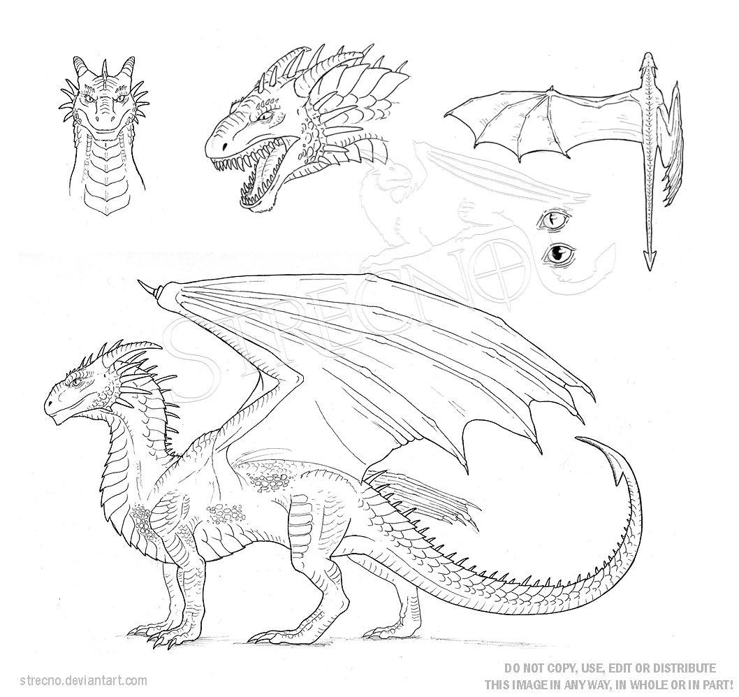 Dragon Character Sheet Template By Strecnoviantart