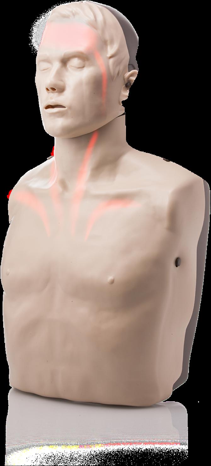 Lightup blood circulation LED CPR Manikin the Brayden