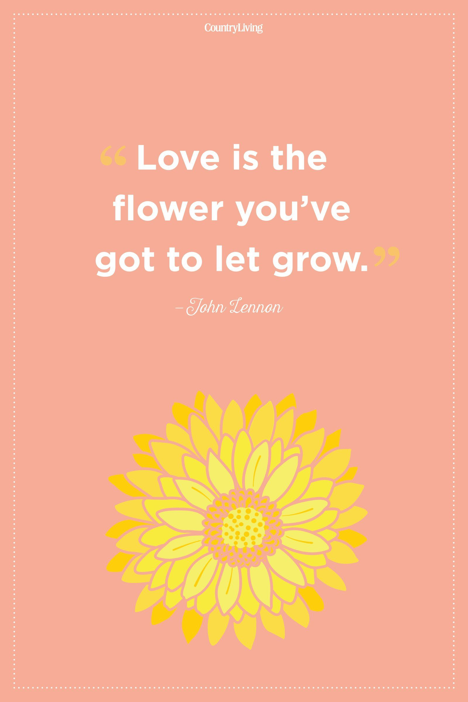 Flower Quotes to Inspire Growth