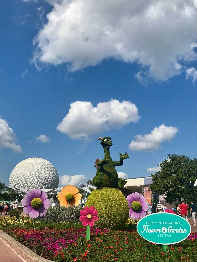 what's blooming at epcot flower and garden festival 2019 | special