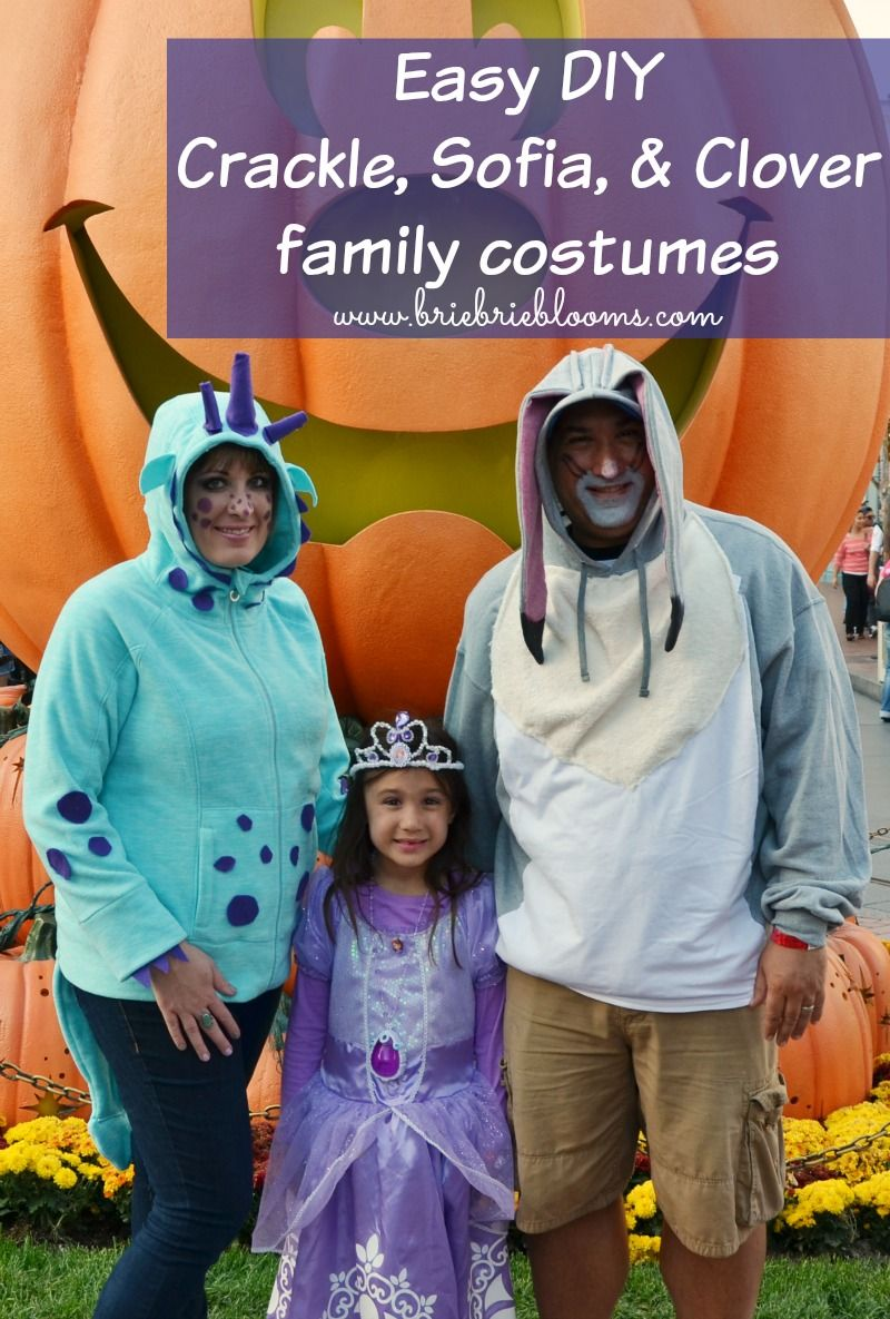 diy sofia the first family costumes: crackle, sofia, and clover