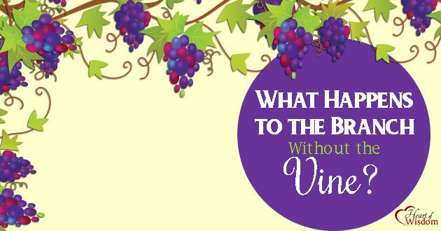 """Sun., 3/26  JESUS THE TRUE VINE  John 15:4-5 (KJV)  """"Abide in Me, & I in you. As the branch cannot bear fruit of itself, except it abide in the Vine; no more can ye, except ye abide in Me.  5 I am the Vine, ye are the branches: He that abideth in Me, & I in him, the same bringeth forth much fruit: for without Me ye can do nothing."""""""