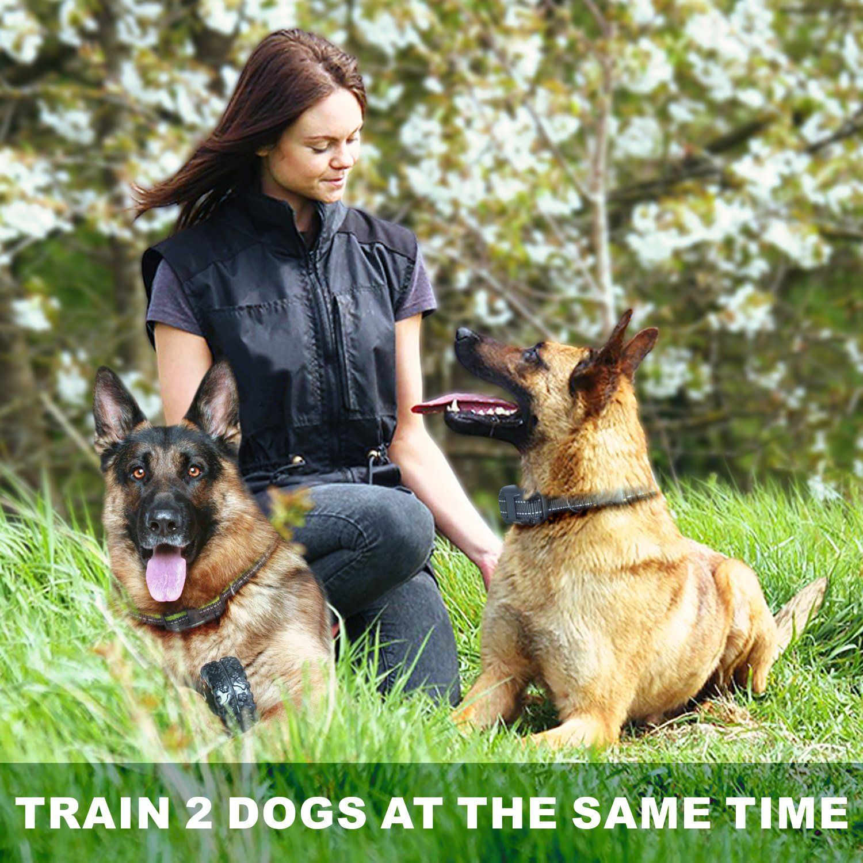 Funnipets Dog Training Collar For 2 Dogs 2600ft Range Dog Shock