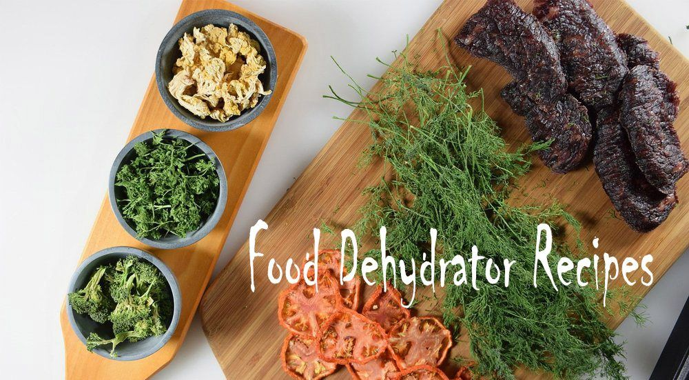 Food dehydrator recipes happycookerz recipes cooking tips recipes archives page 3 of 12 happycookerz forumfinder Image collections
