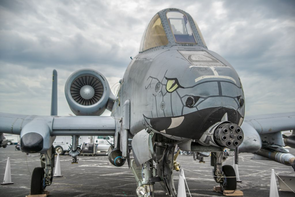 163rd Fighter Squadron Blacksnakes A 10c Aircraft Design
