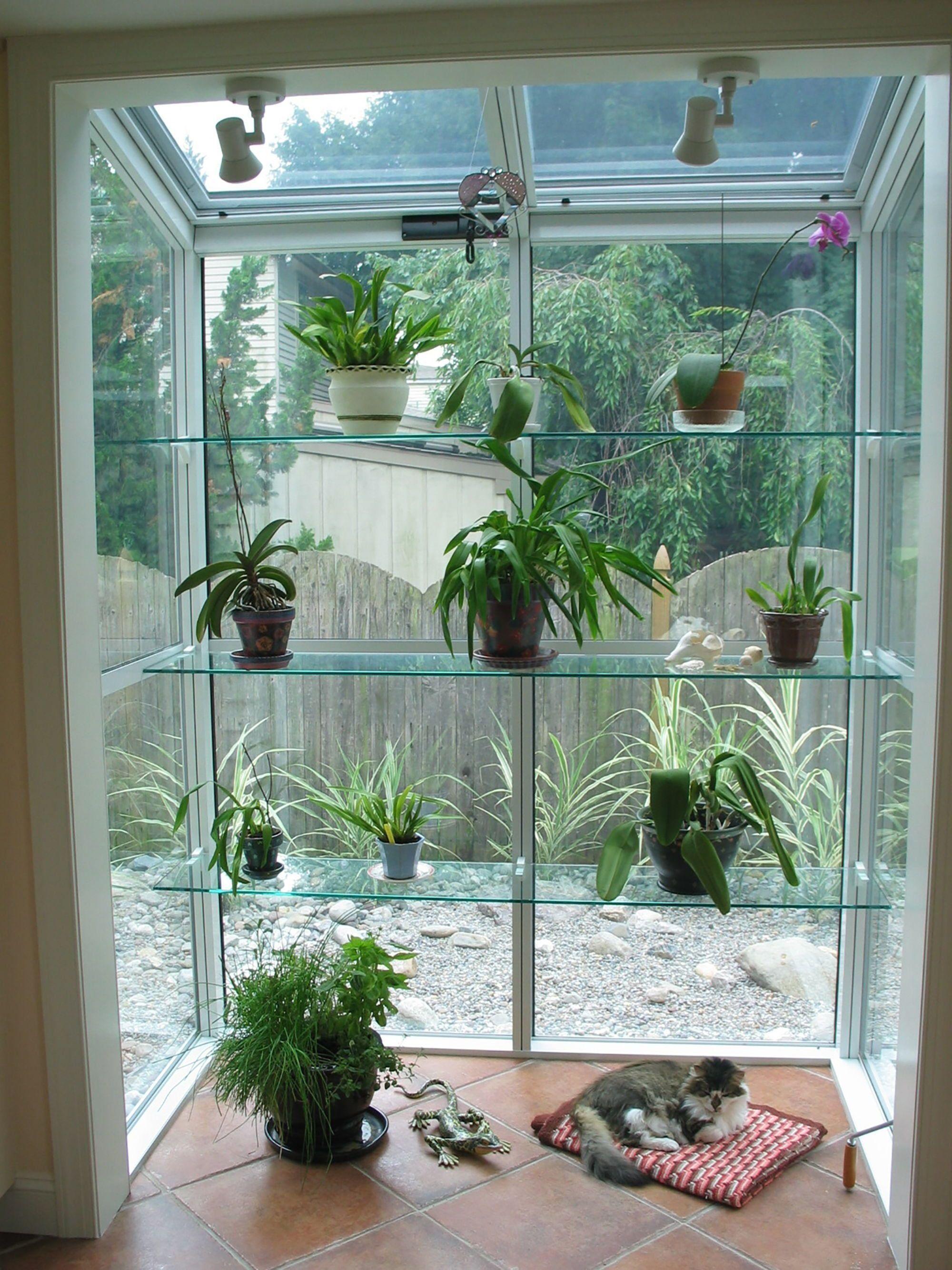 Easy greenhouse ideas greenhouseacademy 1000 in 2020