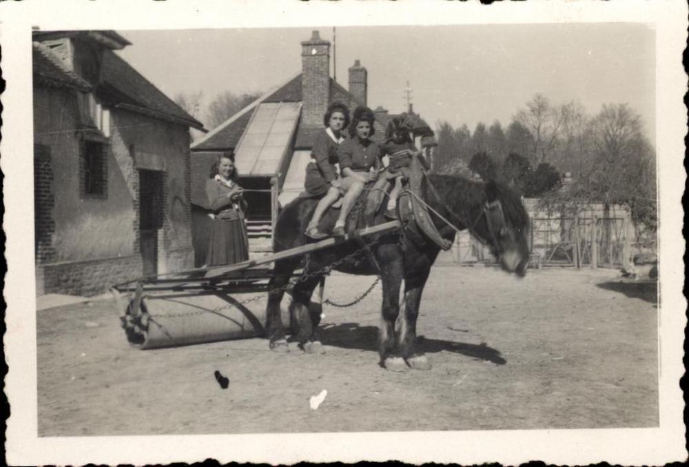 Photo snapshot cheval de trait avec rouleau compresseur femmes fillette ferme