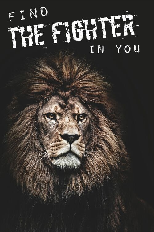 81 Best Motivational Gym Quotes With Images Motivation Animals