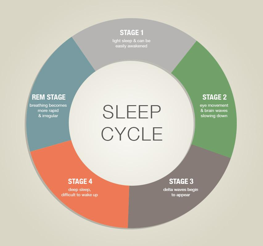 Learn How To Sleep Better By Understanding Sleep Cycles  U0026 Stages  With Images
