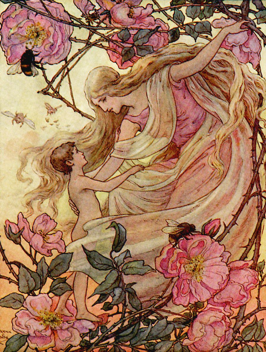 "the rose greets the child. illustration by frank c. papé from ""the"
