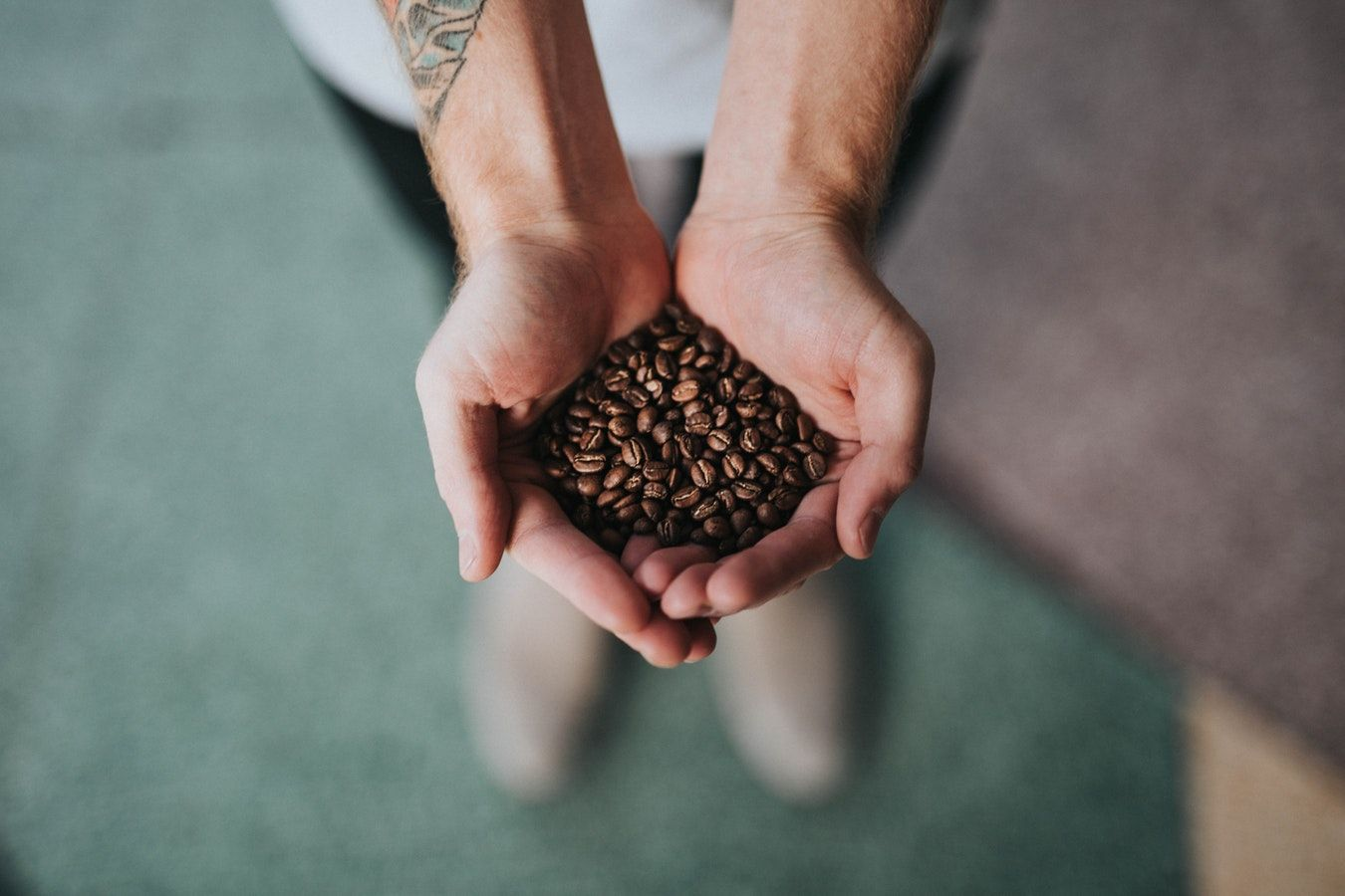 A Person With A Tattoo On His Arm Holding Coffee Beans In His Hands Coffee Benefits Coffee Industry Best Coffee
