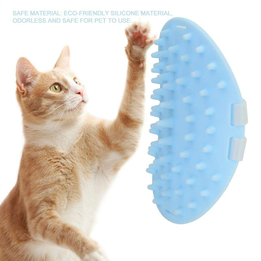 Khhhhhhalend Groomer Upgraded Bristles Accessories In 2020 Cat Toys Pet Accessories Groomer