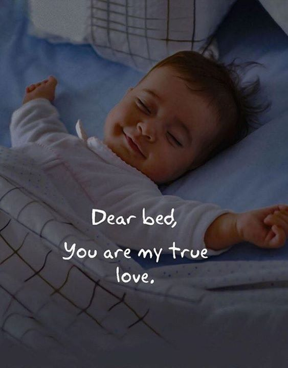 Inspirational Positive Quotes :Dear bed.