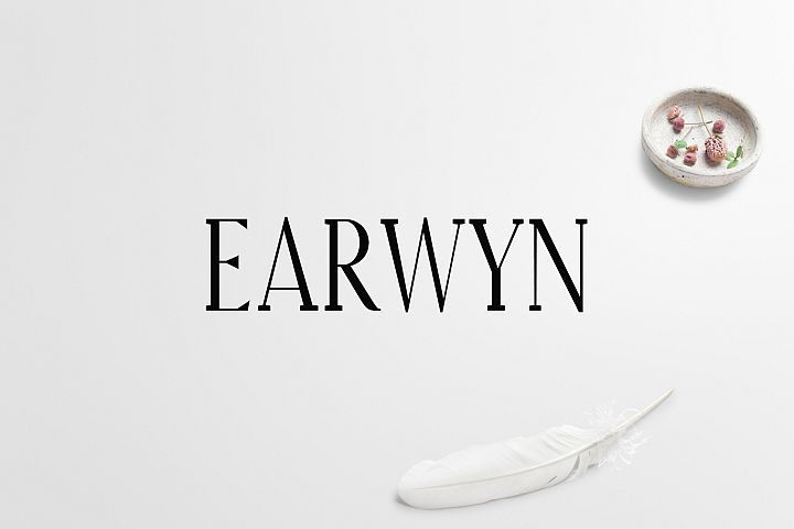 Download Earywn Serif 3 Font Family Pack (35236) | Serif | Font ...