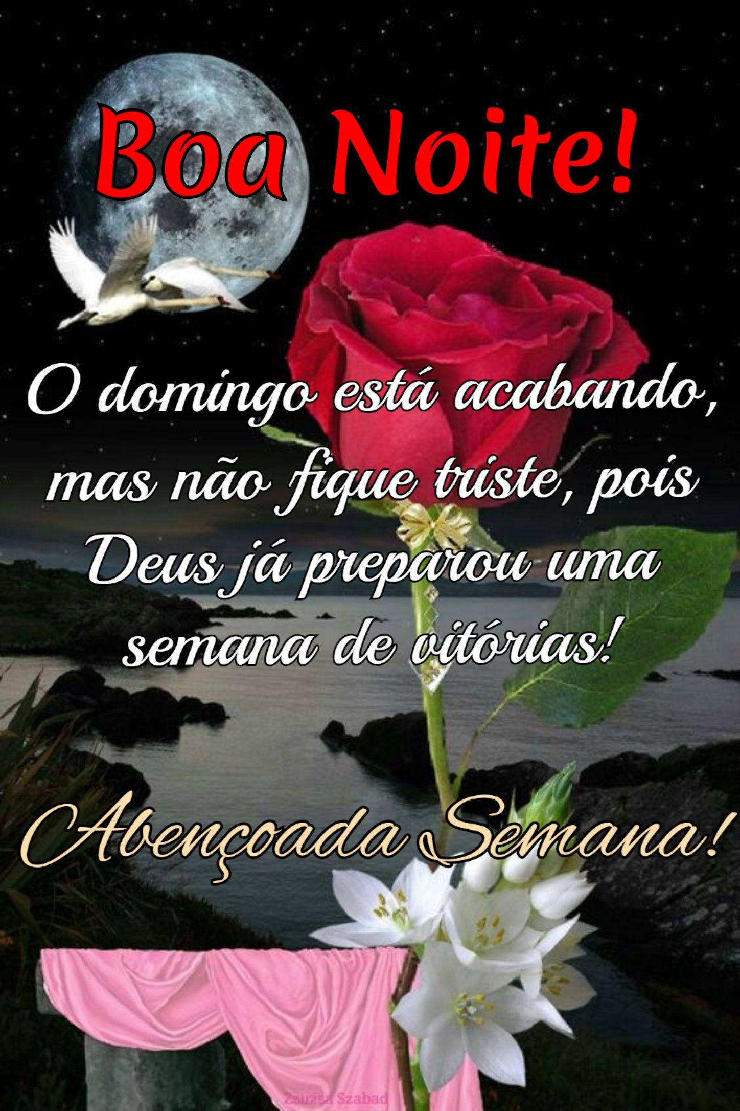 Pin De Cidinha Nobrega Em Flores Com Imagens Mensagem De Boa