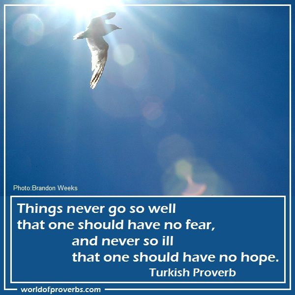 World of Proverbs - Famous Quotes: Things never go so well that one should have no fear, and never so ill that one should have no hope. ~ Turkish Proverb [19005]