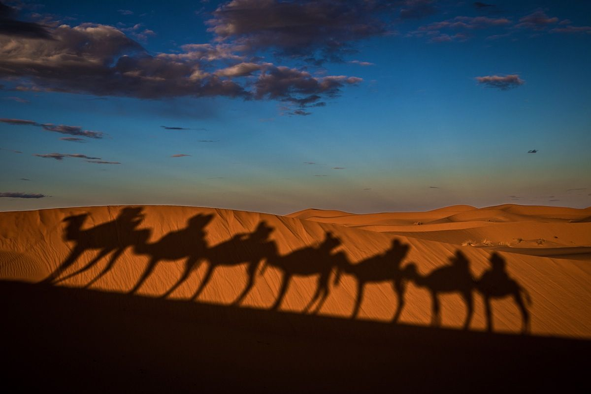 Morocco is one of the most diverse countries in Africa, with high mountains, sweeping desert, rugged coastline, and the winding alleyways of...