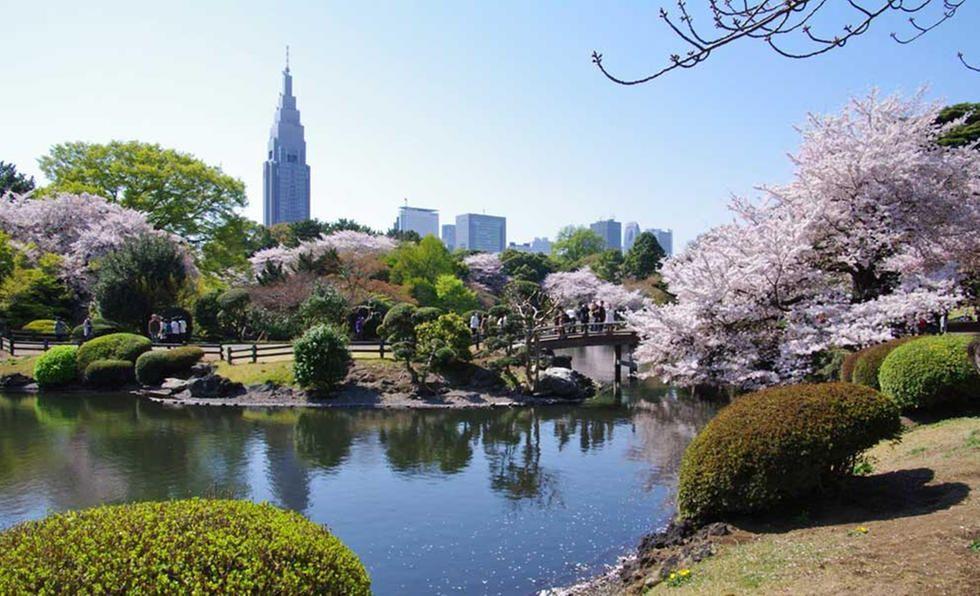 El Jardín Nacional Shinjuku Gyoen es un jardín botánico de 58,3 hectáreas de extensión, en Shinjuku en la Prefectura de Tokio, Japón.