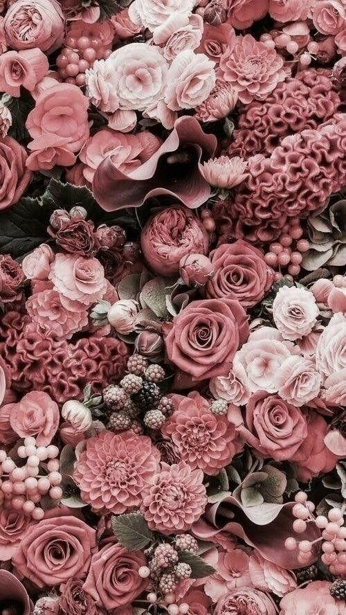Muted Pink Tones Blumen Hintergrund Iphone Blumentapete Blumen Hintergrund