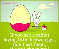 Happy Easter Every Bunny!