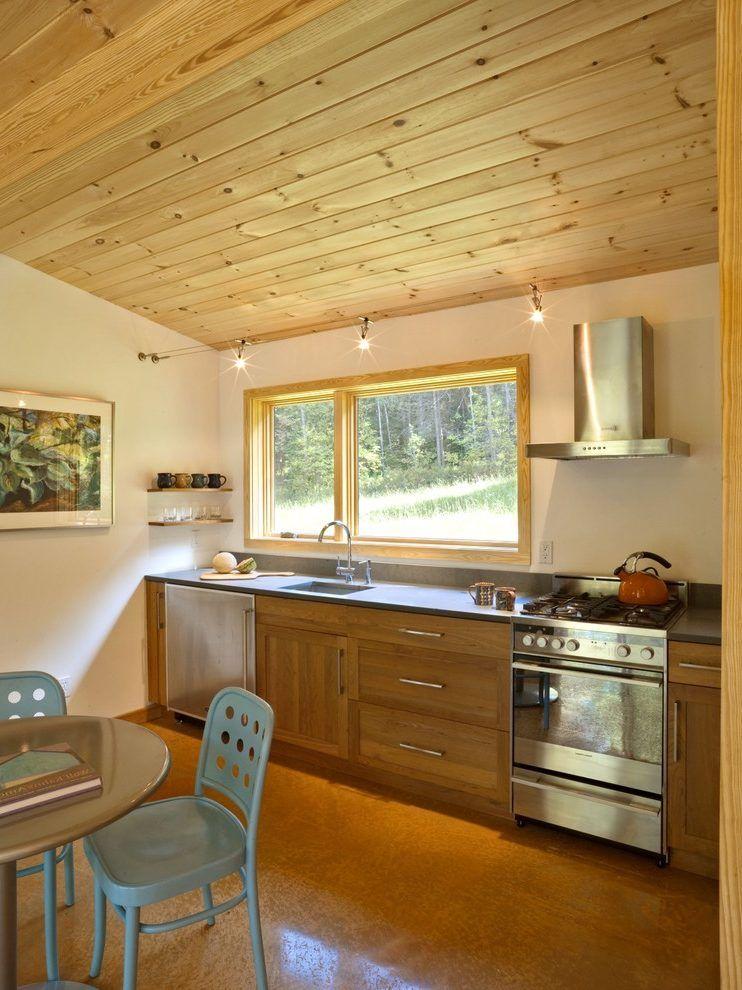 Image result for modern cabin kitchens | Kitchen remodel ...