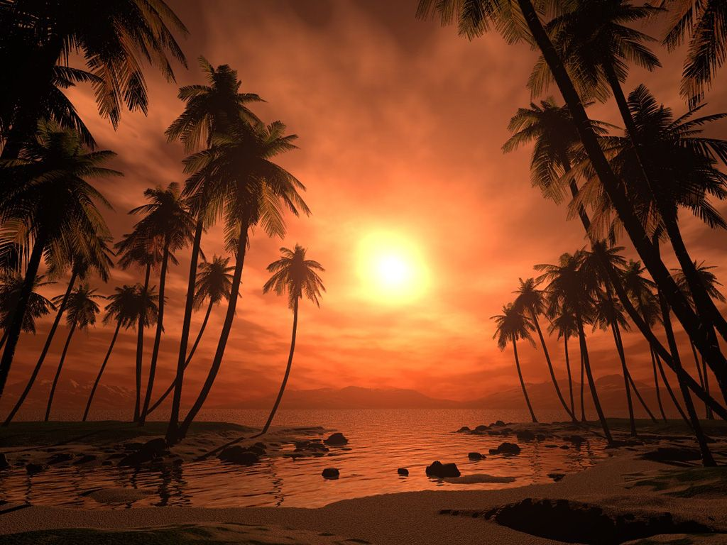 Cool Beach Wallpaper: Praia Wallpaper Tropical 122, Grátis Papel De Parede, Cool
