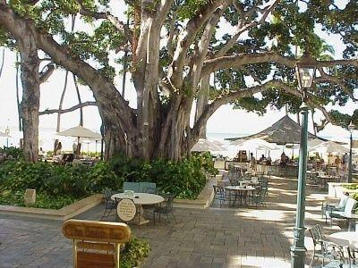 The Beach Bar Waikiki Hotels Moana