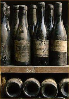 Dusty Wine Bottles Google Search Wine Shoot Inspo