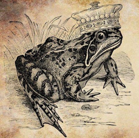 frog prince png clip art digital image by DigitalGraphicsShop