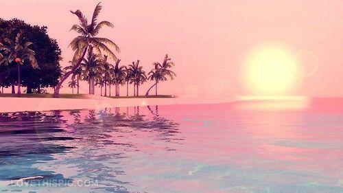 Palmiers Coucher De Soleil Paradiseeee Coucher De Soleil Rose Tumblr Photographie Fond D Ecran Telephone