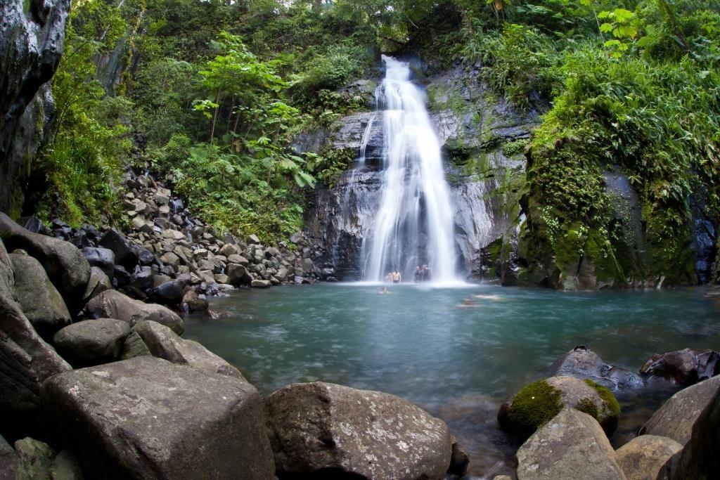 a8e6bc668eacd57fca8e81253a485a0f - Pura Vida Gardens And Waterfalls Jaco
