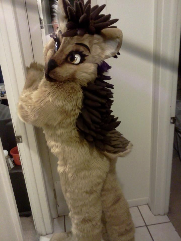dcf7eb6de23e hedgehog fursuit! So cute!! I really want a invader zim fursuit type of  thing. ( maybe not fur....) but I can t make one  (