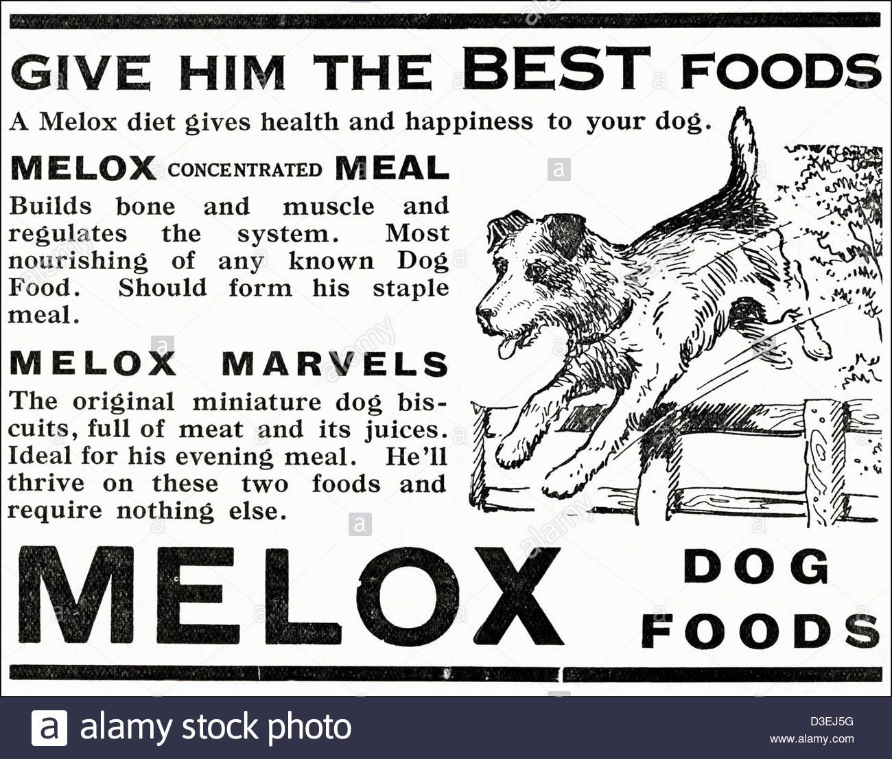 Original 1920s Vintage Print Advertisement From English Country