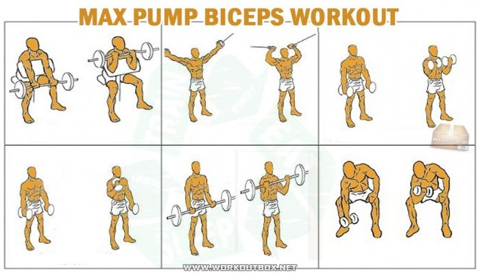 Best bicep growth routine
