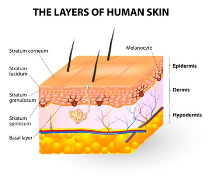 Healing open wounds caused by skin picking | SkinPick.com | health ...