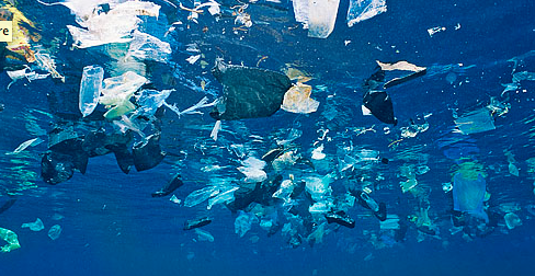 Image result for plastic pollution in the ocean