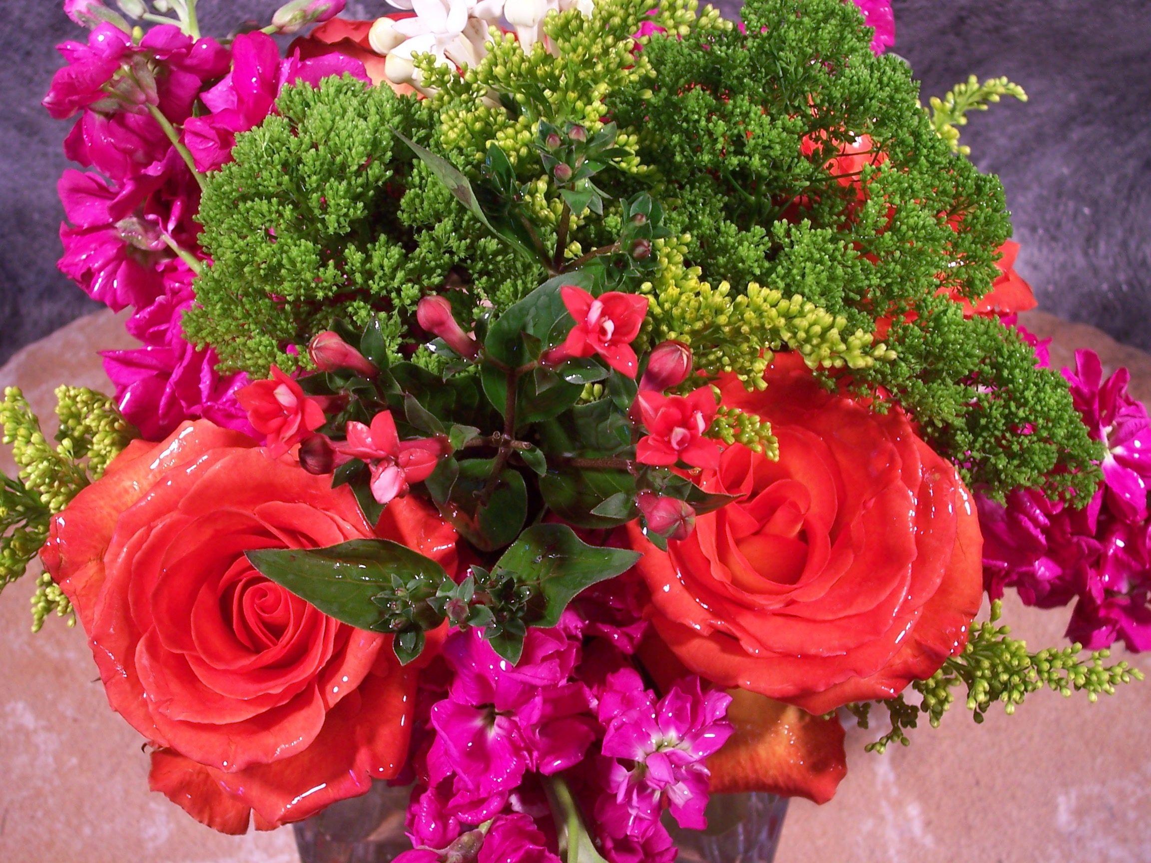 True Floral Color   My Colors   Pinterest   Florists