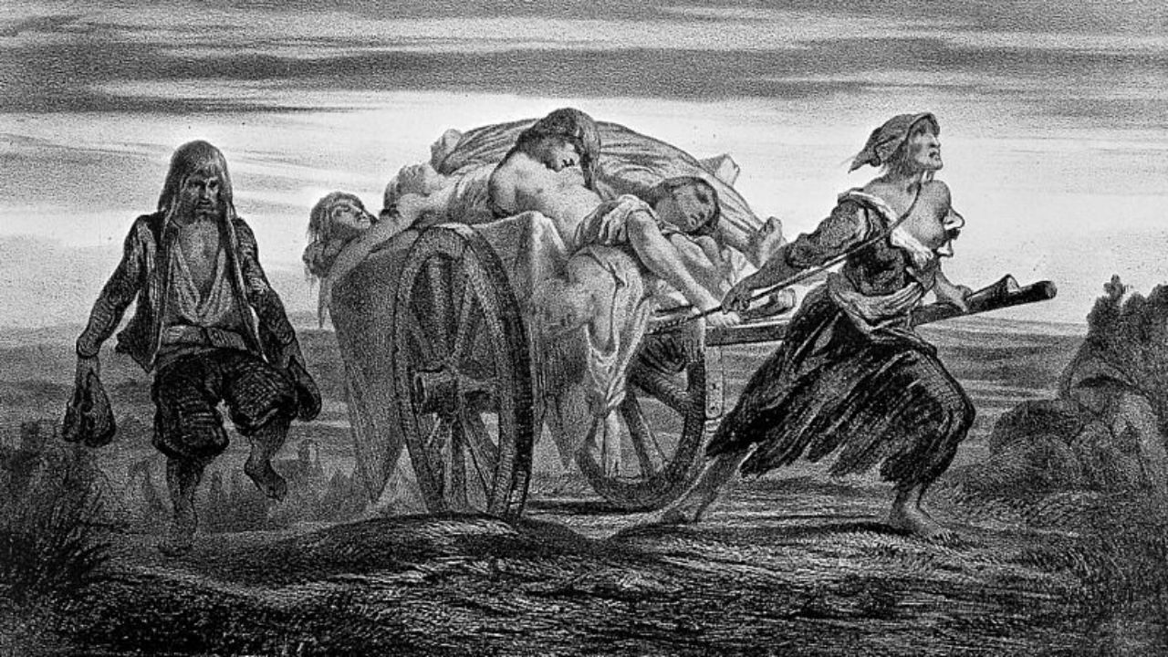 In historical writings and popular lore, the Black Death has long been portrayed as a cataclysmic event—a plague that wiped out 30% to60% of Europe's population, young and old, rich and poor. Yet historians in recent decades have struggled to find evidence of death on such a scale because of incomplete census records and a dearth of excavated mass graves.