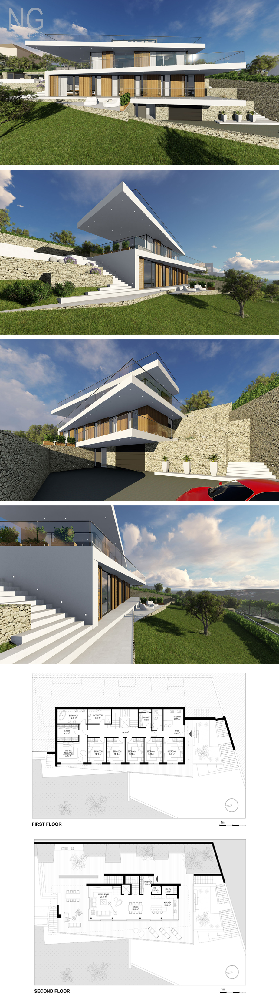 Modern villa \
