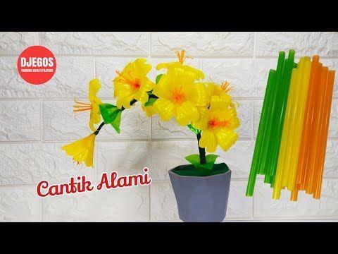 Bunga Dari Sedotan Plastik Yang Cantik Alami Beautiful Drinking