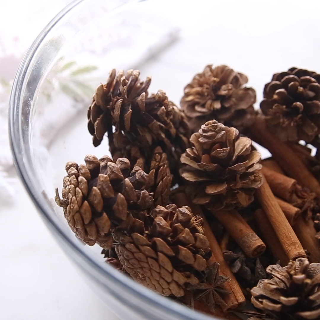 Homemade Christmas Potpourri - How to make potpourri