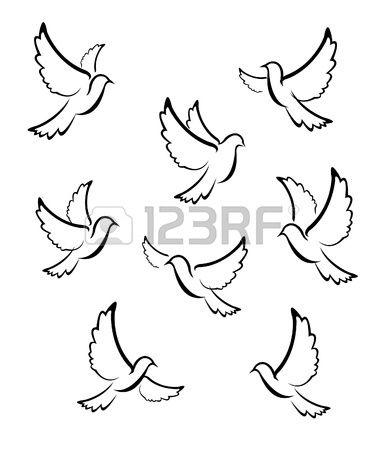 Taube Vektor Taube Zeichnung Taube Zeichnen Friedenstaube Tattoo