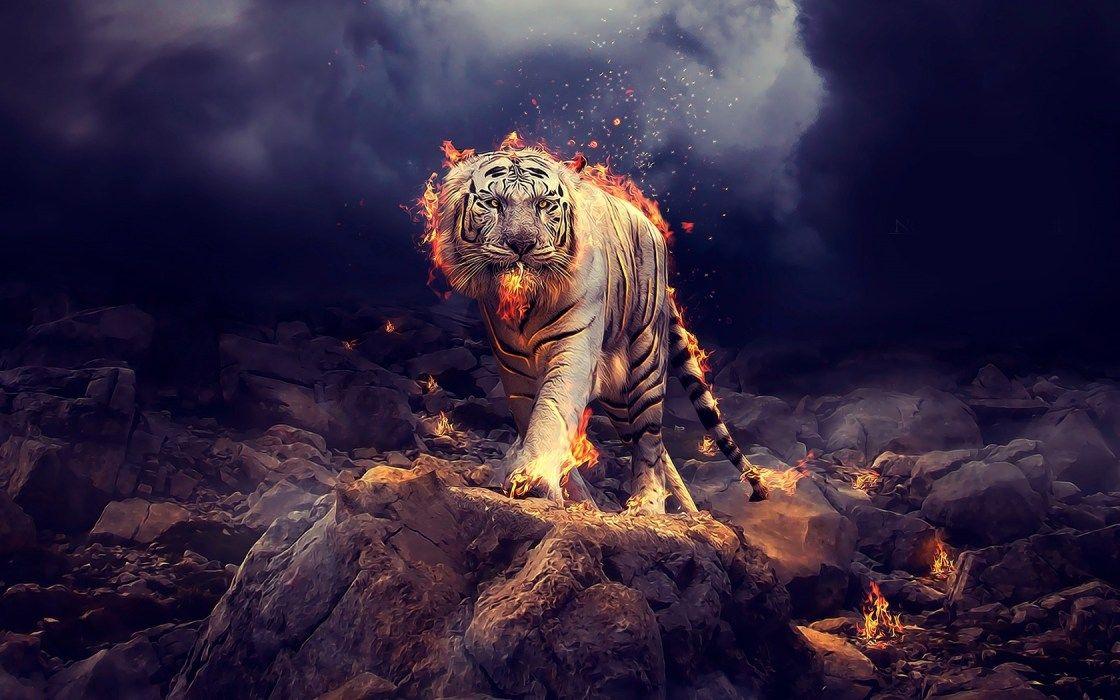 Art Tigre Voyage Onirique Art Tigre Art Graphique Fond D Ecran Art