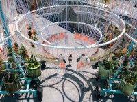 Il progetto di Andrés Jaque per il P.S.1 di New York