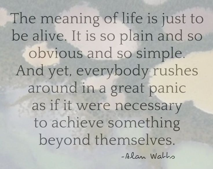 Meaning Of Life Quotes Inspiration B98E70B3B023546Ddff44Ca9Ffd831C6 736×585 Pixels  Quotes I